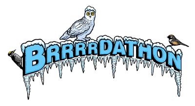 Brrrdathon_logo+Small+400px+72+dpi
