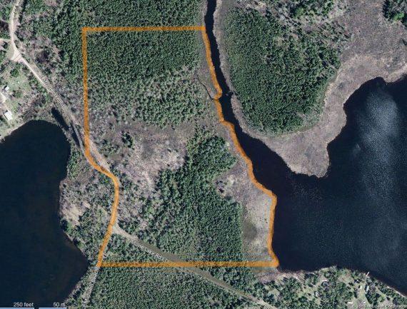 East Stone Lake Bog showing boundary BING map
