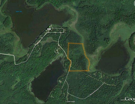 East Stone Lake FOSZB land bog