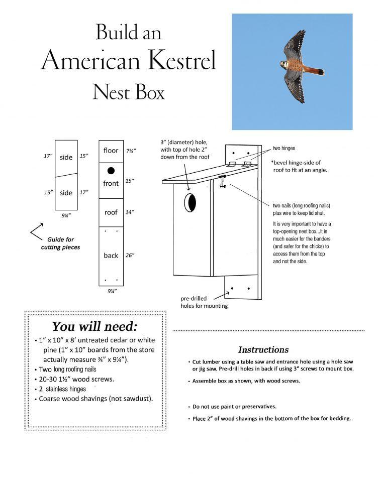 kestrel-nest-box-plans-copy